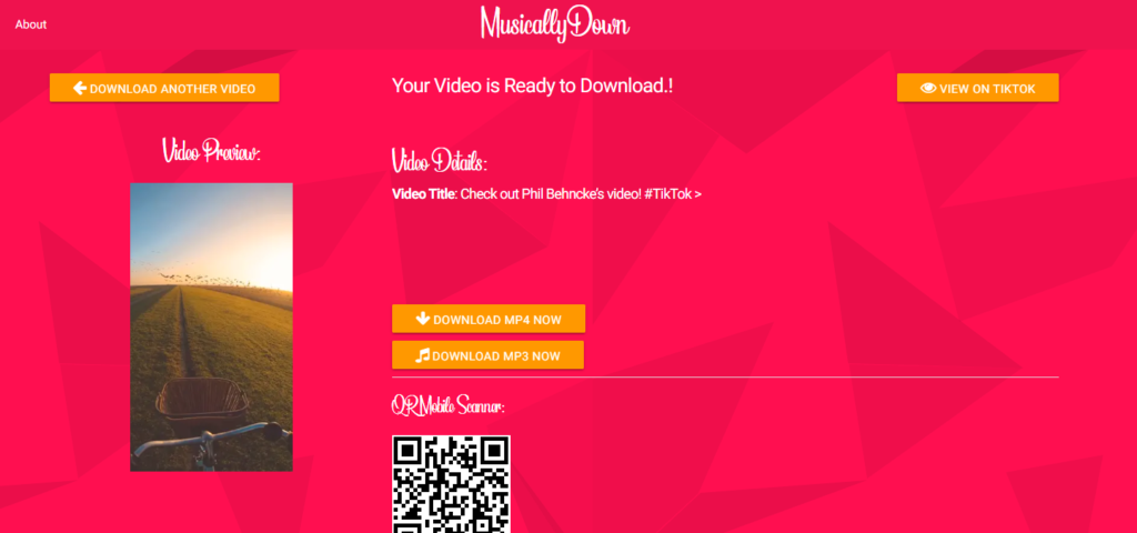 MusicallyDown - TikTok Video Downloader